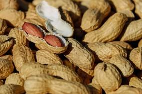 Erdnussbutter-Früchte-Smoothie