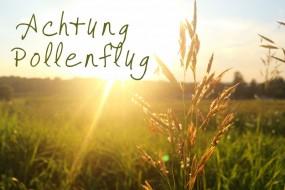 Heuschnupfen: schon zum Ende der Pollensaison ans nächste Jahr denken
