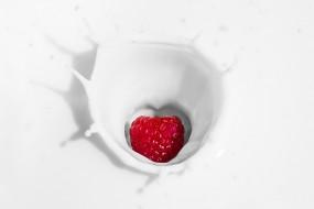 Gesundheit beginnt im Bauch: Probiotika