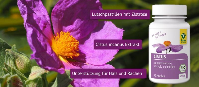 https://www.wellness-shop.de/gesundheit/naturheilkunde/cistus-pastillen-bio.html?number=2087-01