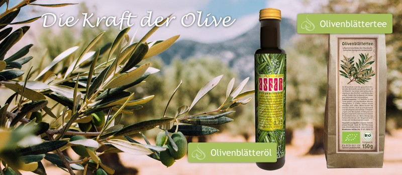 https://www.wellness-shop.de/search?sSearch=olivenblätter